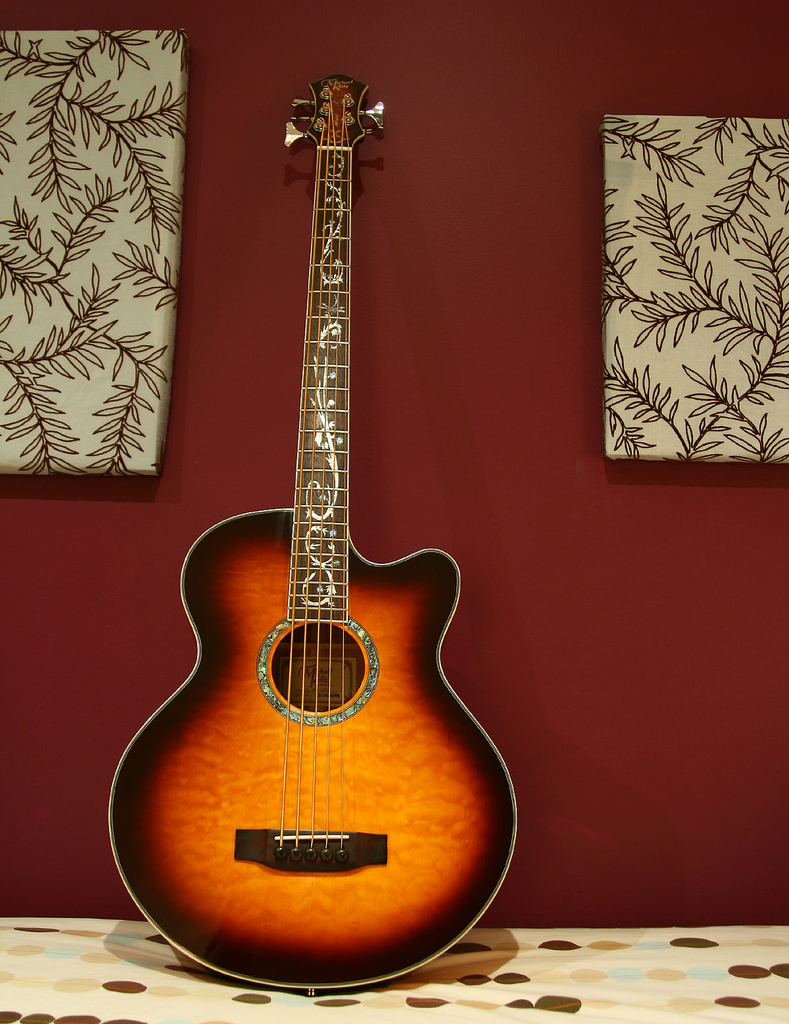 Acoustic Electric Bass