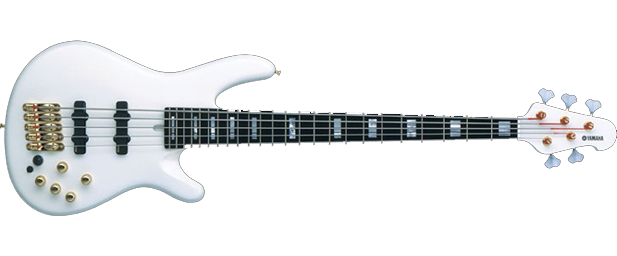5 String Electric Bass